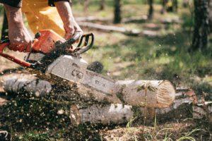 Motorsäge Forstunternehmen
